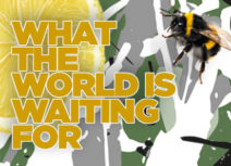 'What the World Is Waiting For' promotional image. Yellow font with an image of a lemon and a bee in the background.