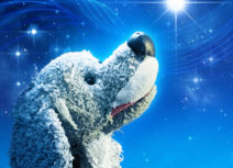 Promotional image for 'Twinkle Twinkle' a grey toy dog is on a blue background that looks like the night sky. The dog is looking upwards towards the top right hand corner at a bright, shining star.